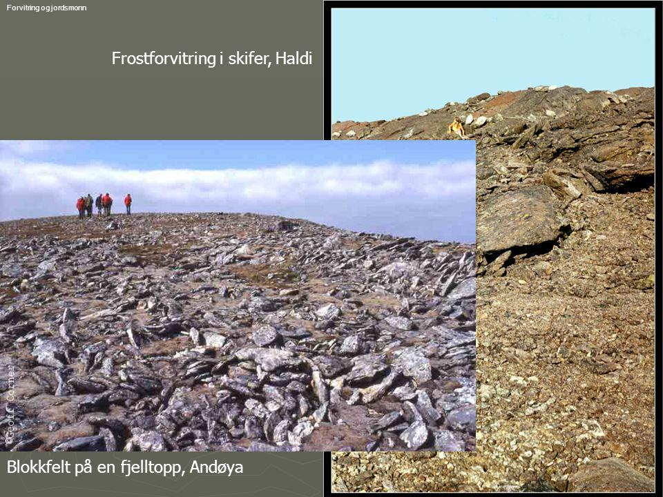 GEO-1001 Geoff Corner 2006Forvitring og jordsmonn Frostforvitring i skifer, Haldi Blokkfelt på en fjelltopp, Andøya