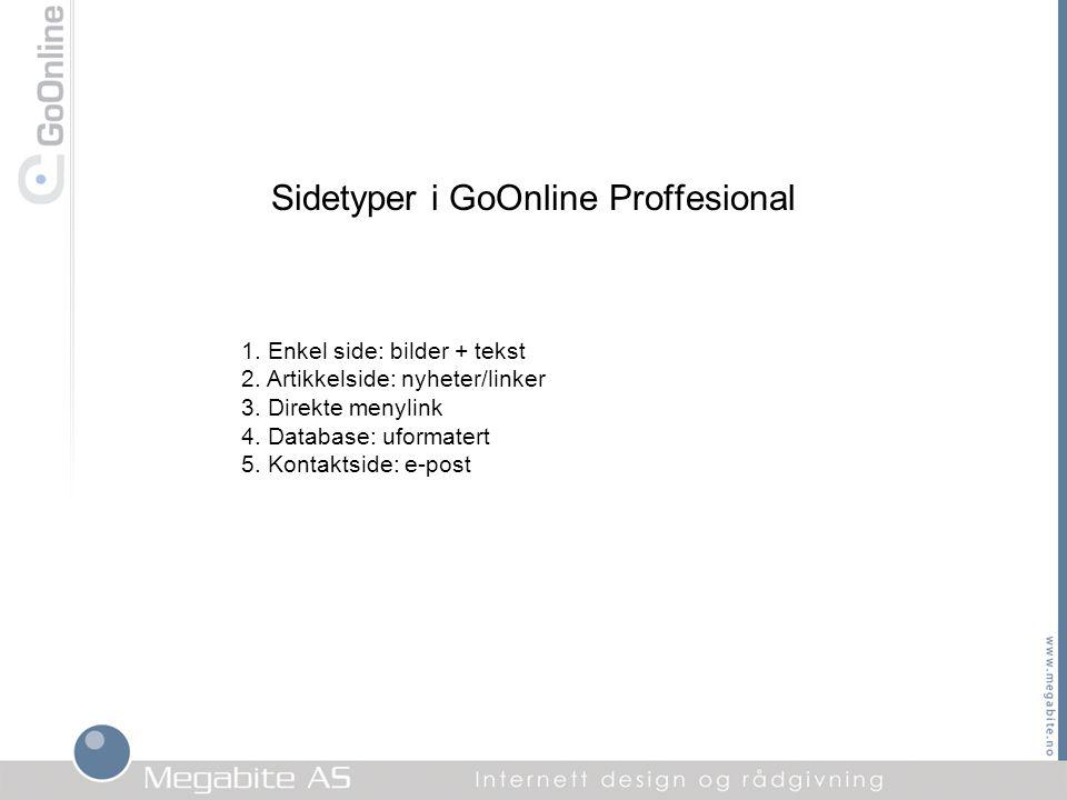 Sidetyper i GoOnline Proffesional 1. Enkel side: bilder + tekst 2.