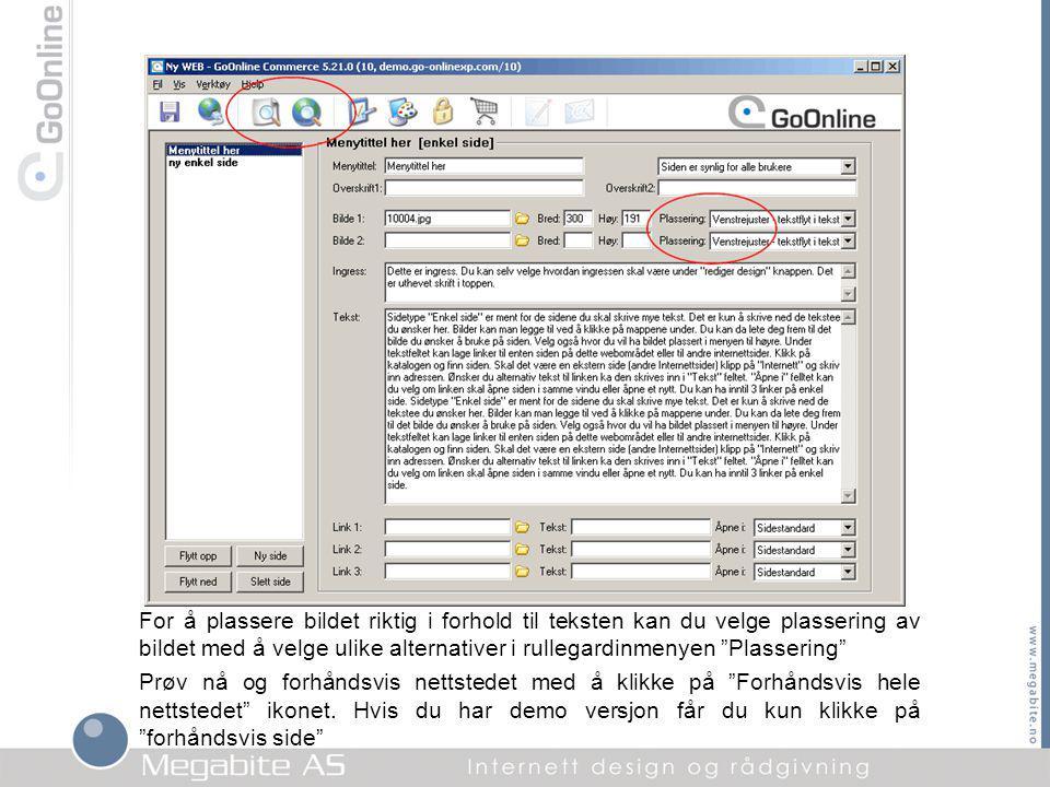 Slik vil resultatet se ut med tekst og bilde med bruk av Enkel side i GoOnline.