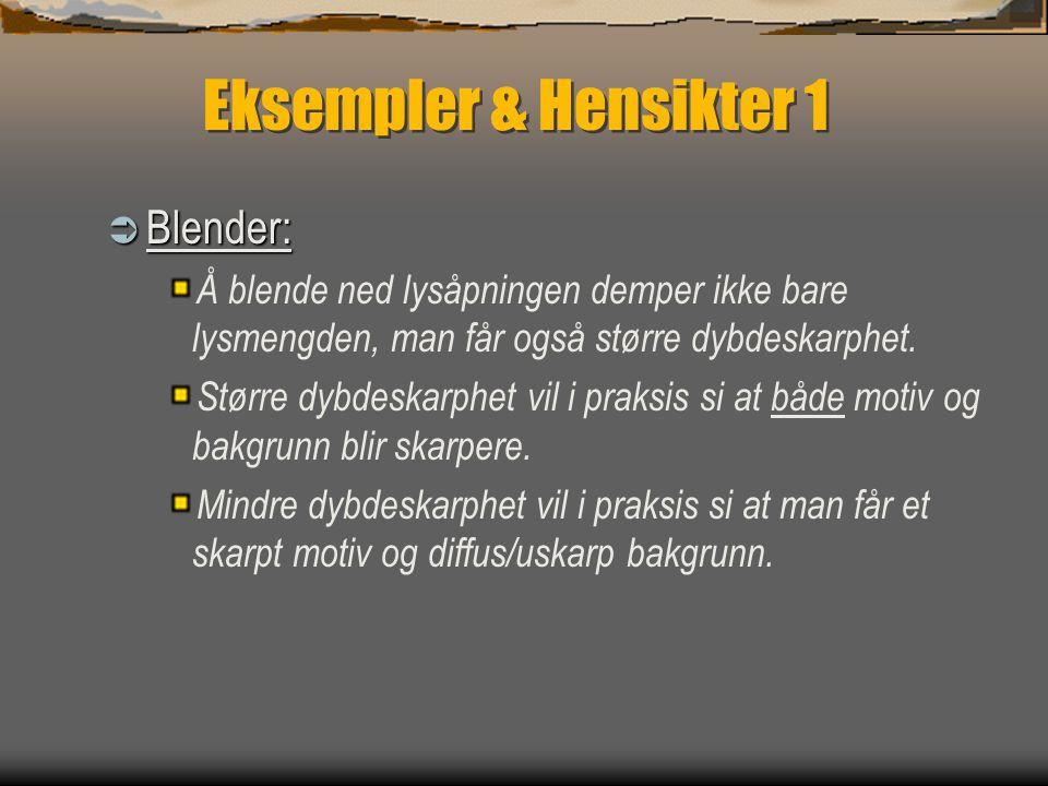 Eksempler & Hensikter 1  Blender: Å blende ned lysåpningen demper ikke bare lysmengden, man får også større dybdeskarphet.