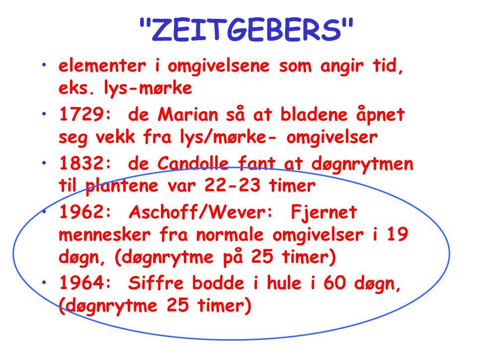 ZEITGEBERS •elementer i omgivelsene som angir tid, eks.