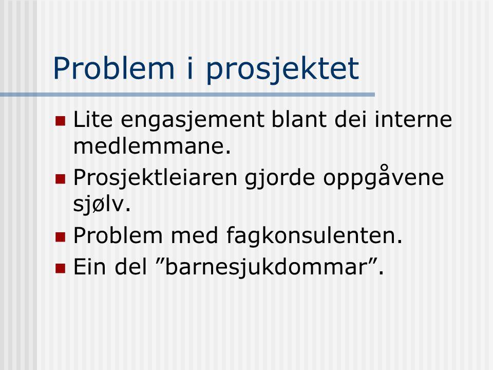 Problem i prosjektet  Lite engasjement blant dei interne medlemmane.  Prosjektleiaren gjorde oppgåvene sjølv.  Problem med fagkonsulenten.  Ein de