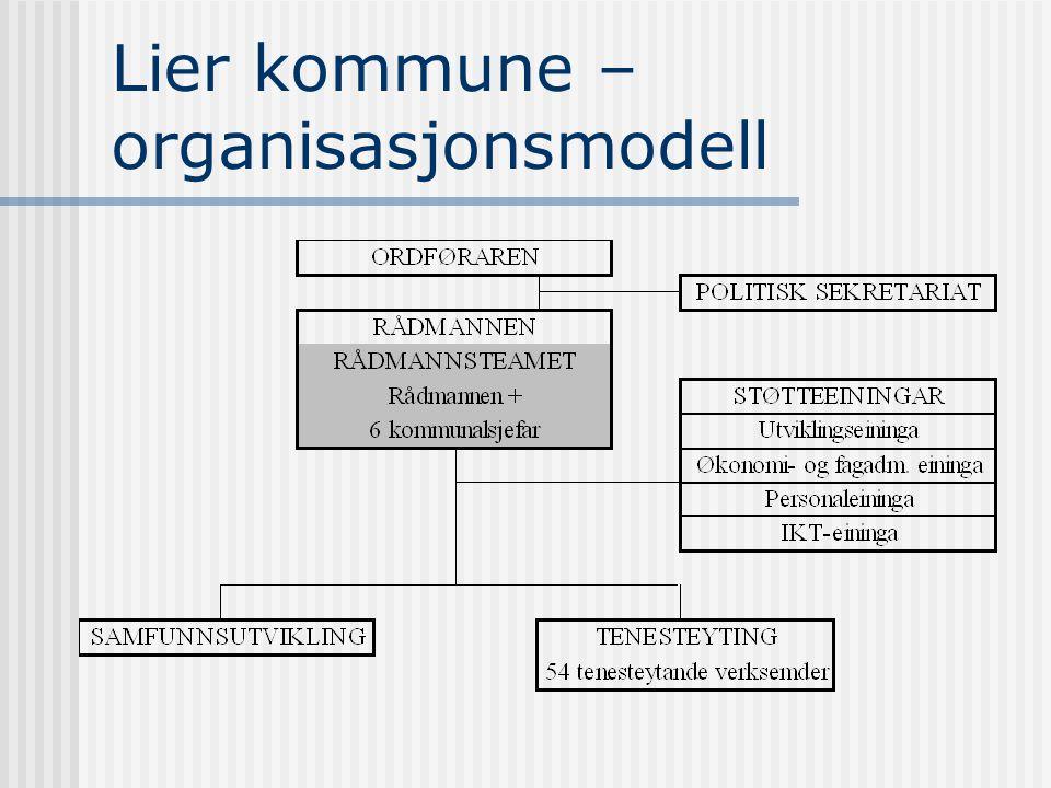 Lier kommune  Rekneskapsmessig underskot i 2002. Tilsettingsstopp i dei rådhusbaserte tenestene.