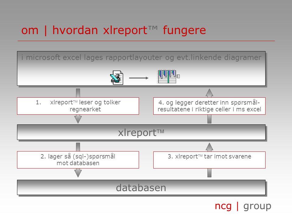 ncg | group om | hva er xlreport™ • xlreport™ henter, sammenligner og presenterer informasjon fra selskapets databaser • xlreport™ kan hente informasj