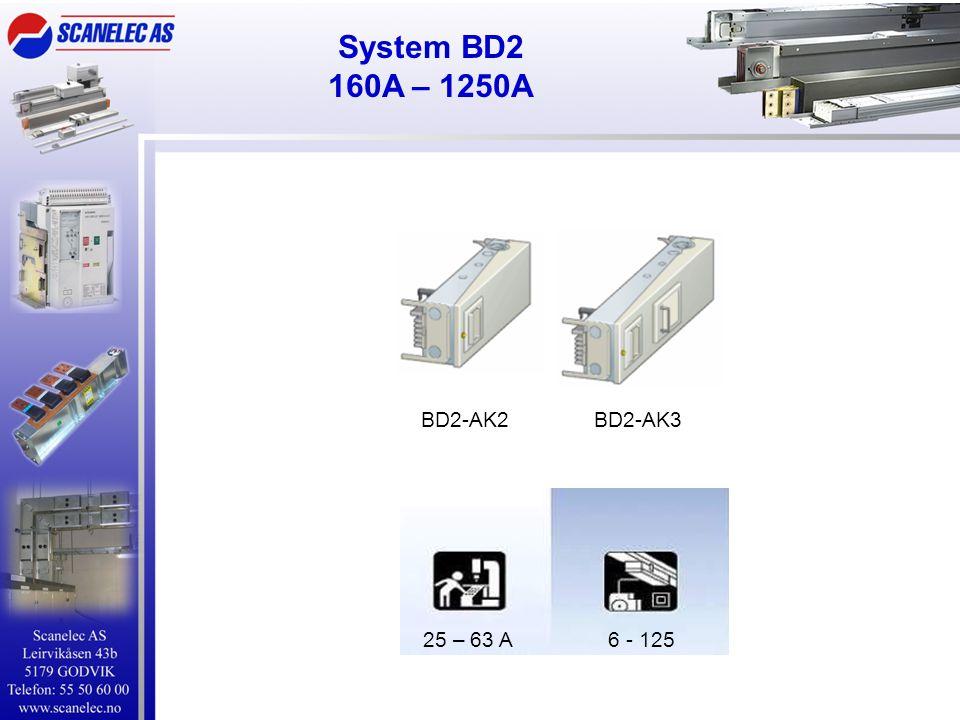 System BD2 160A – 1250A BD2-AK2BD2-AK3 25 – 63 A 6 - 125