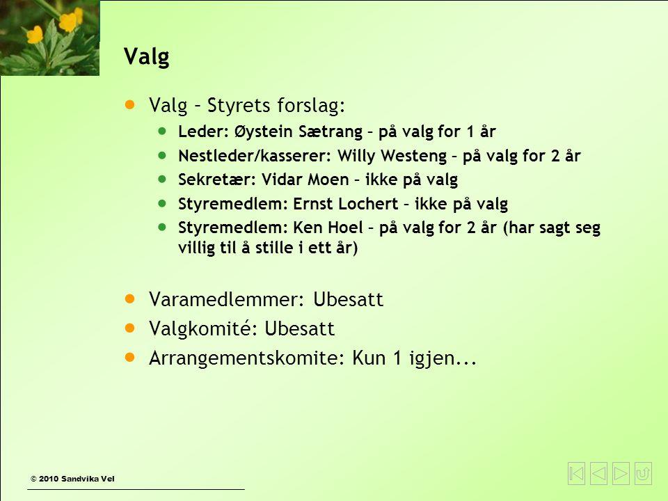 © 2010 Sandvika Vel Valg  Valg – Styrets forslag:  Leder: Øystein Sætrang – på valg for 1 år  Nestleder/kasserer: Willy Westeng – på valg for 2 år