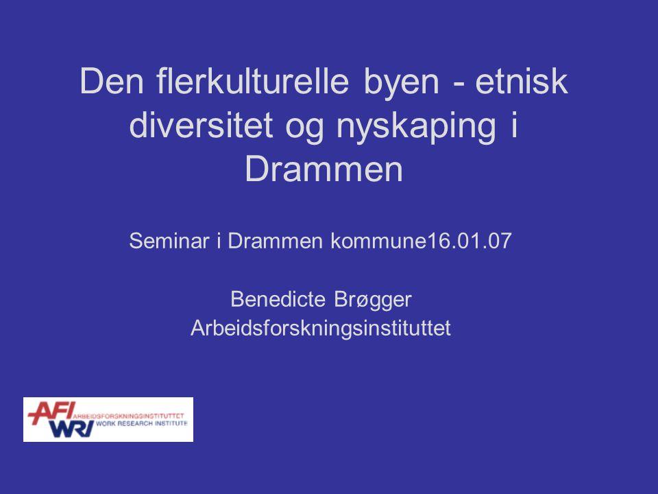 Den flerkulturelle byen - etnisk diversitet og nyskaping i Drammen Seminar i Drammen kommune16.01.07 Benedicte Brøgger Arbeidsforskningsinstituttet
