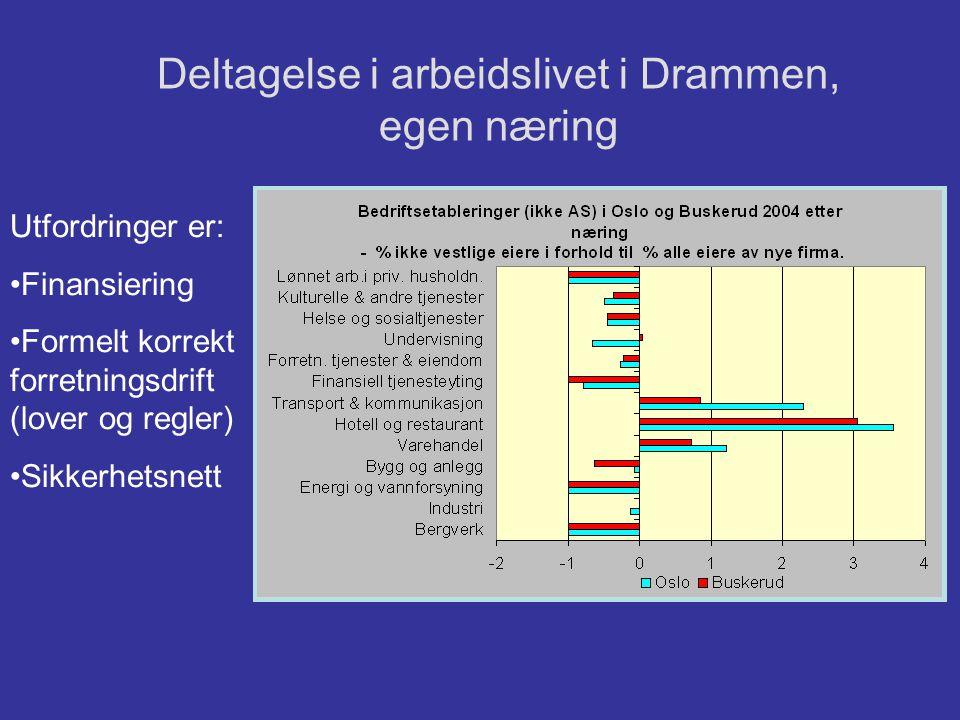 Deltagelse i arbeidslivet i Drammen, egen næring Utfordringer er: •Finansiering •Formelt korrekt forretningsdrift (lover og regler) •Sikkerhetsnett