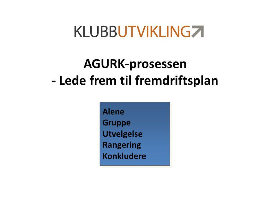 AGURK-prosessen - Lede frem til fremdriftsplan Alene Gruppe Utvelgelse Rangering Konkludere Alene Gruppe Utvelgelse Rangering Konkludere