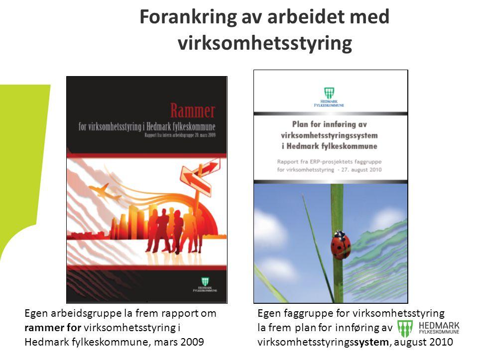 Forankring av arbeidet med virksomhetsstyring Egen arbeidsgruppe la frem rapport om rammer for virksomhetsstyring i Hedmark fylkeskommune, mars 2009 E