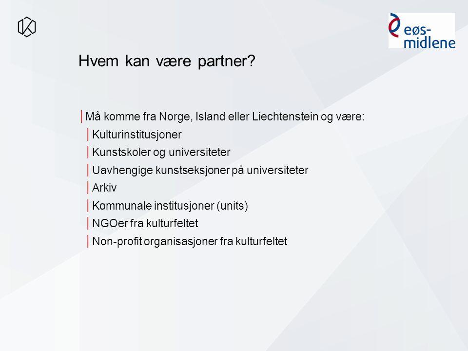 Hvem kan være partner.