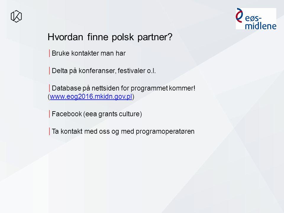 Hvordan finne polsk partner.│Bruke kontakter man har │Delta på konferanser, festivaler o.l.