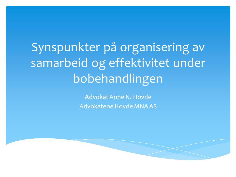 Synspunkter på organisering av samarbeid og effektivitet under bobehandlingen Advokat Anne N.