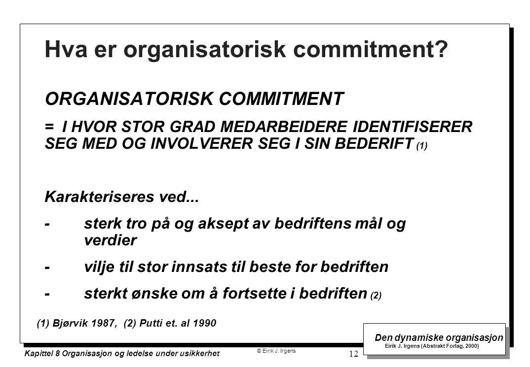 © Eirik J. Irgens Den dynamiske organisasjon Eirik J. Irgens (Abstrakt Forlag, 2000) Kapittel 8 Organisasjon og ledelse under usikkerhet 12 Hva er org