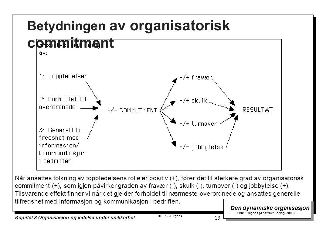 © Eirik J. Irgens Den dynamiske organisasjon Eirik J. Irgens (Abstrakt Forlag, 2000) Kapittel 8 Organisasjon og ledelse under usikkerhet 13 Betydninge