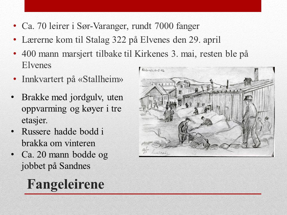 Fangeleirene • Ca. 70 leirer i Sør-Varanger, rundt 7000 fanger • Lærerne kom til Stalag 322 på Elvenes den 29. april • 400 mann marsjert tilbake til K
