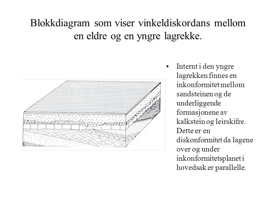 Blokkdiagram som viser vinkeldiskordans mellom en eldre og en yngre lagrekke. •Internt i den yngre lagrekken finnes en inkonformitet mellom sandsteine
