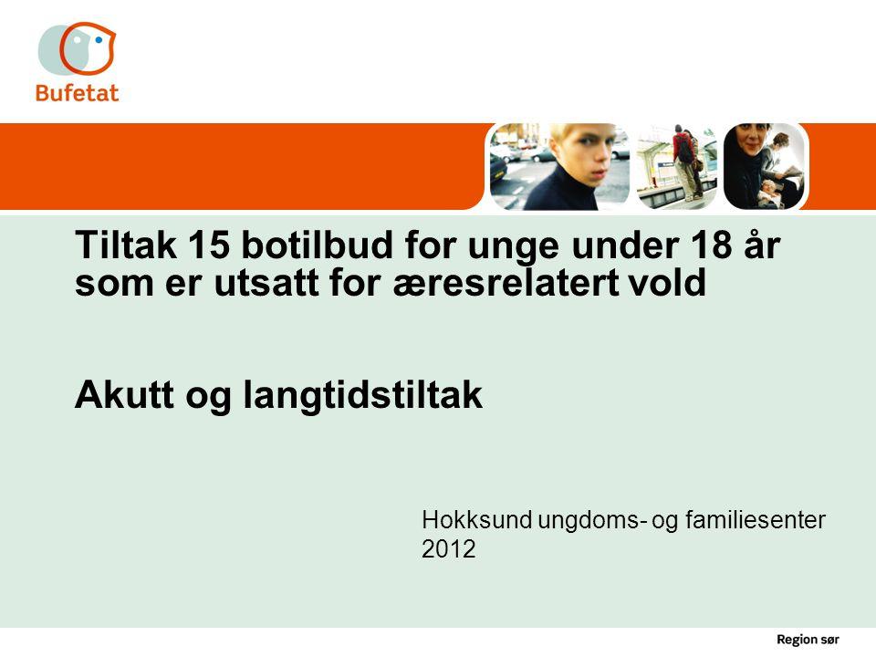 Slide nr 12Tiltak mot tvangsekteskap HUFS 2009 / dato: 21.06.2014 Utfordringer for hjemmene •Hva utsetter jeg meg selv og min familie for.