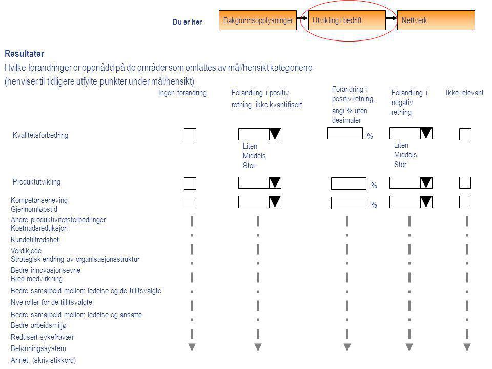 Resultater Hvilke forandringer er oppnådd på de områder som omfattes av mål/hensikt kategoriene (henviser til tidligere utfylte punkter under mål/hens