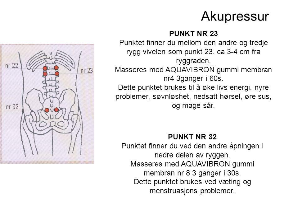 Akupressur PUNKT NR 23 Punktet finner du mellom den andre og tredje rygg vivelen som punkt 23.
