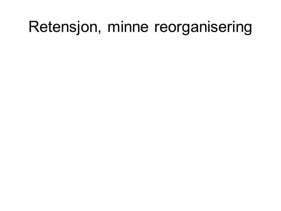 Retensjon, minne reorganisering