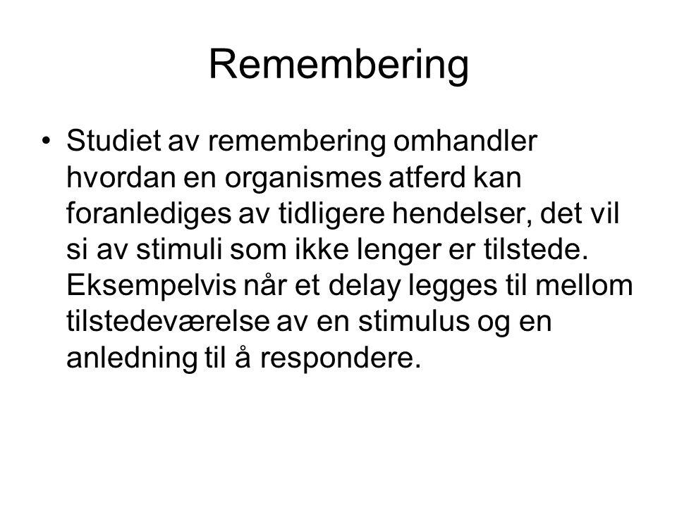 Remembering •Studiet av remembering omhandler hvordan en organismes atferd kan foranlediges av tidligere hendelser, det vil si av stimuli som ikke lenger er tilstede.