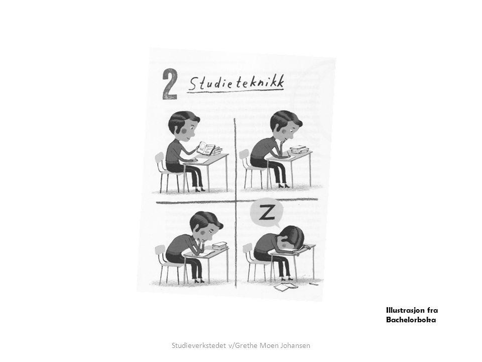Innhold • Få oversikten • Læringsressurser • Læringsstil • 'Teknikker' • Oppsummering og refleksjon Studieverkstedet v/Grethe Moen Johansen