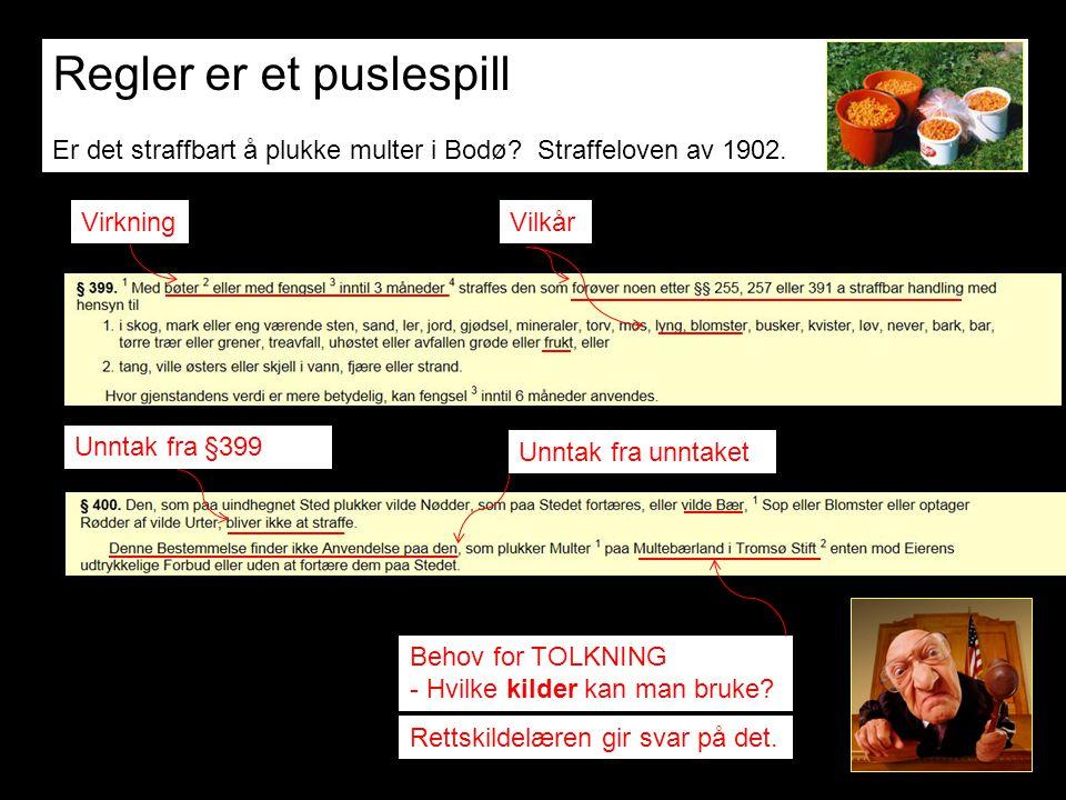 Regler er et puslespill Er det straffbart å plukke multer i Bodø? Straffeloven av 1902. Vilkår Unntak fra §399 Virkning Behov for TOLKNING - Hvilke ki