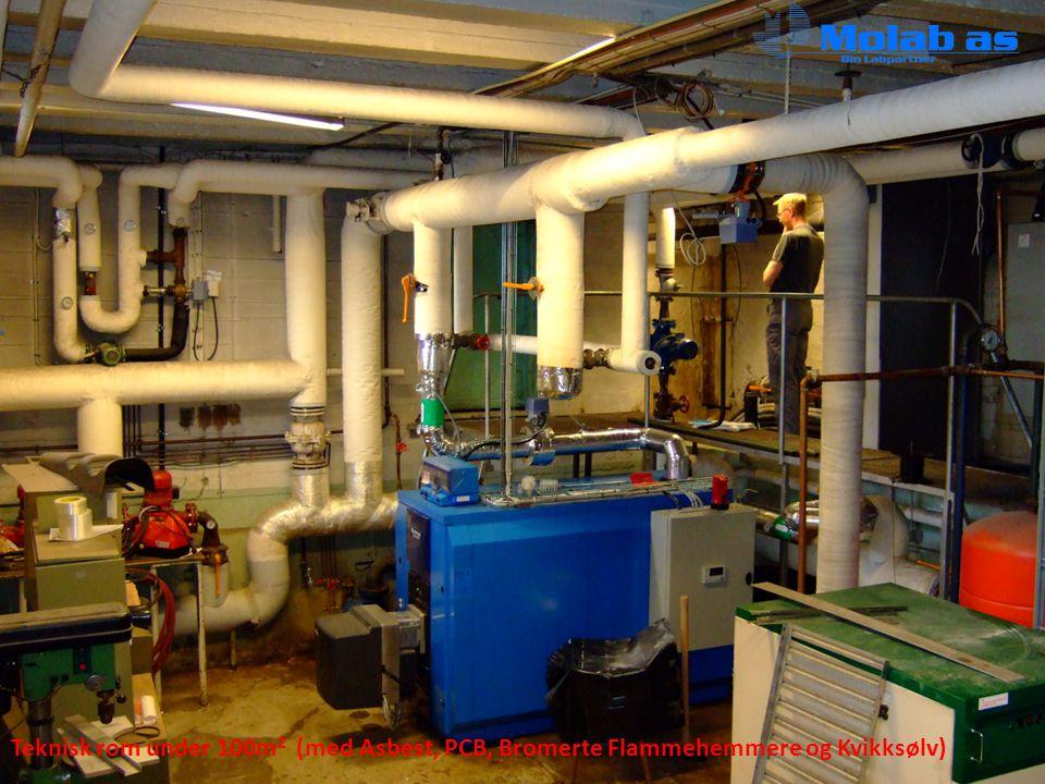 Teknisk rom under 100m 2 (med Asbest, PCB, Bromerte Flammehemmere og Kvikksølv)