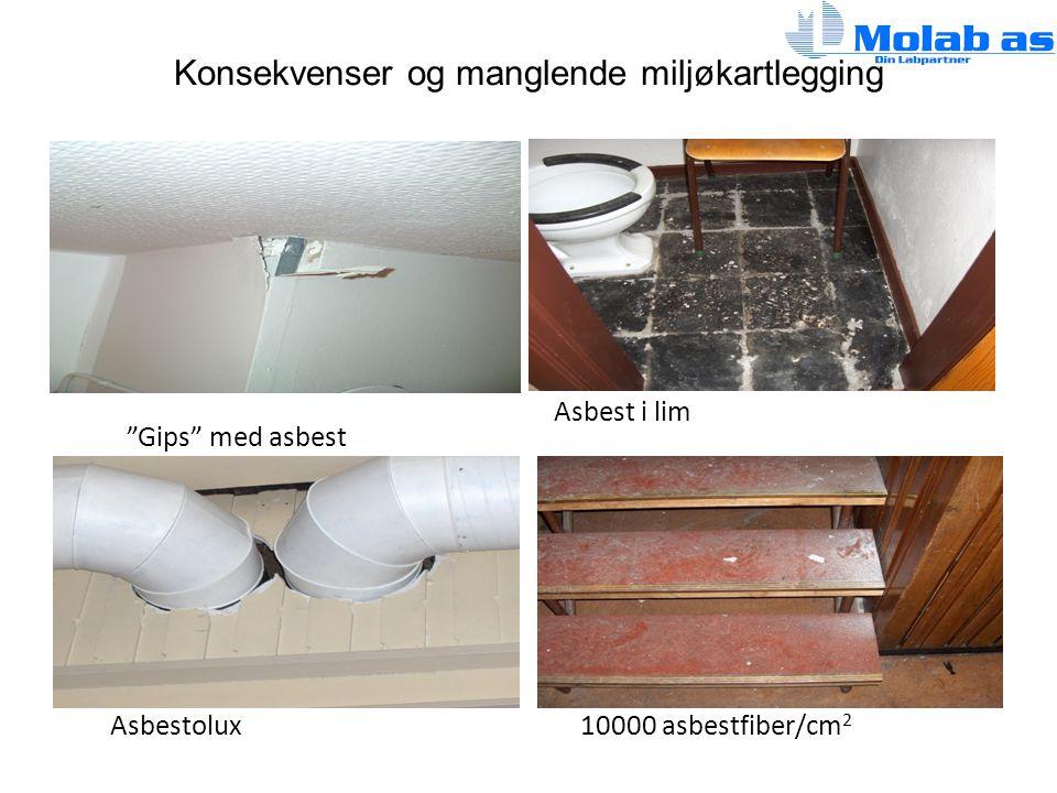 """Konsekvenser og manglende miljøkartlegging Asbestolux """"Gips"""" med asbest Asbest i lim 10000 asbestfiber/cm 2"""
