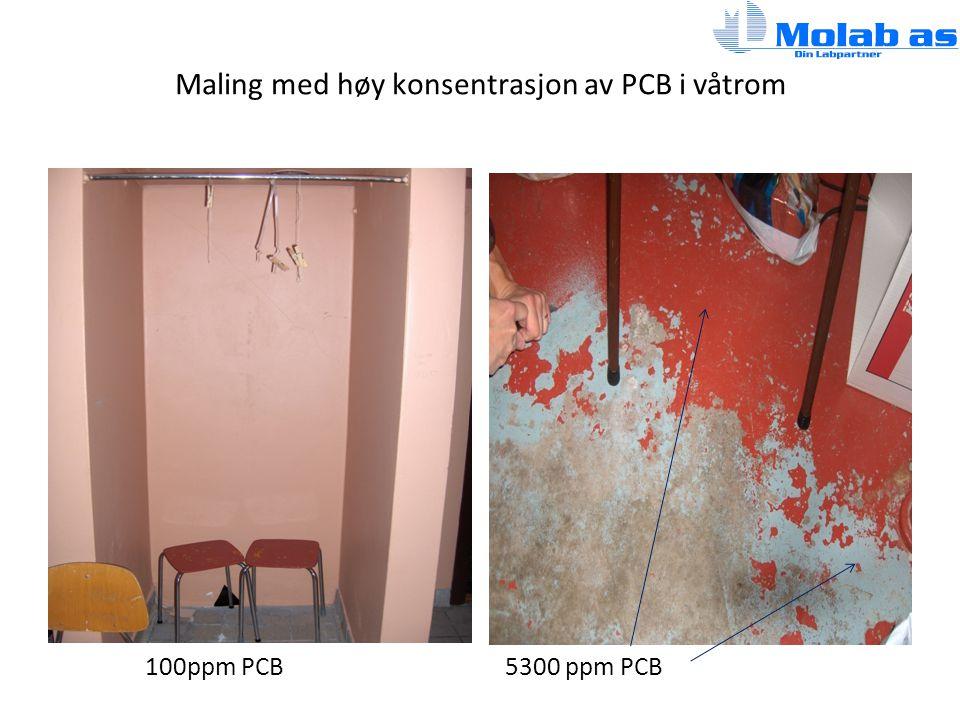 Maling med høy konsentrasjon av PCB i våtrom 100ppm PCB5300 ppm PCB