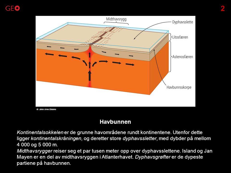 Kontinentalsokkelen er de grunne havområdene rundt kontinentene. Utenfor dette ligger kontinentalskråningen, og deretter store dyphavssletter, med dyb