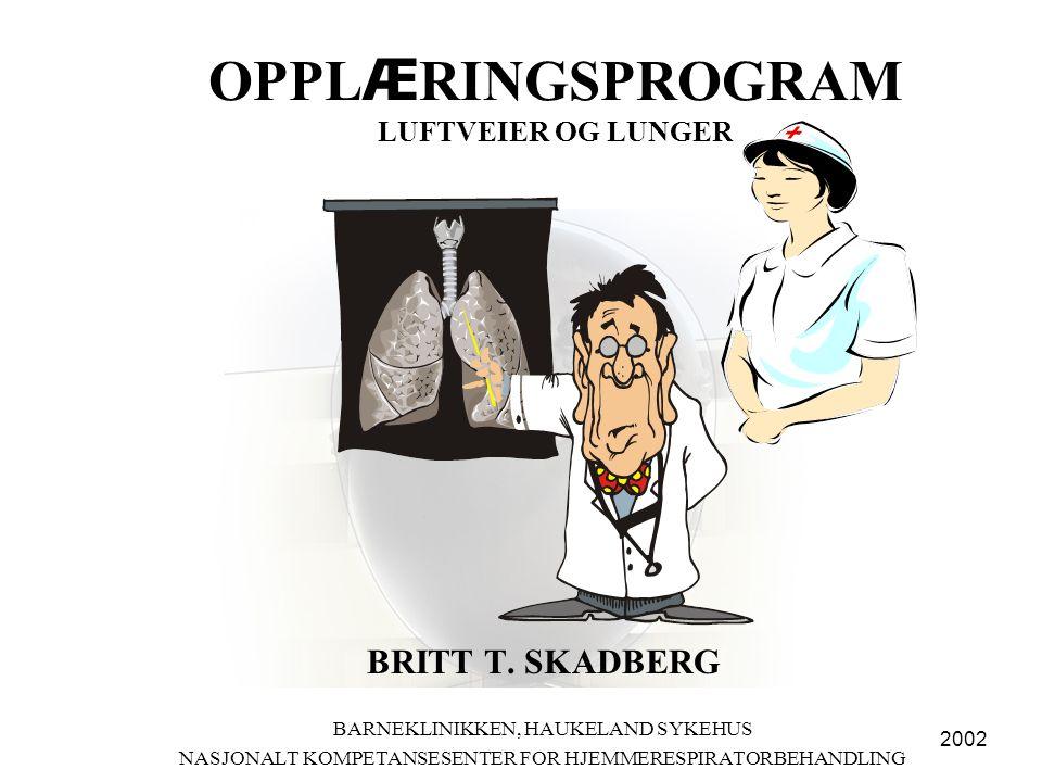 OPPL Æ RINGSPROGRAM •LUFTVEIER OG LUNGER - OPPBYGGING OG FUNKSJON –Lufveienes oppbygging og inndeling •øvre •nedre –Gasstransport •oksygen •kulldioksyd –Flimmerhårenes funksjon –Slimsekresjon –Regulering og kontroll av respirasjonen