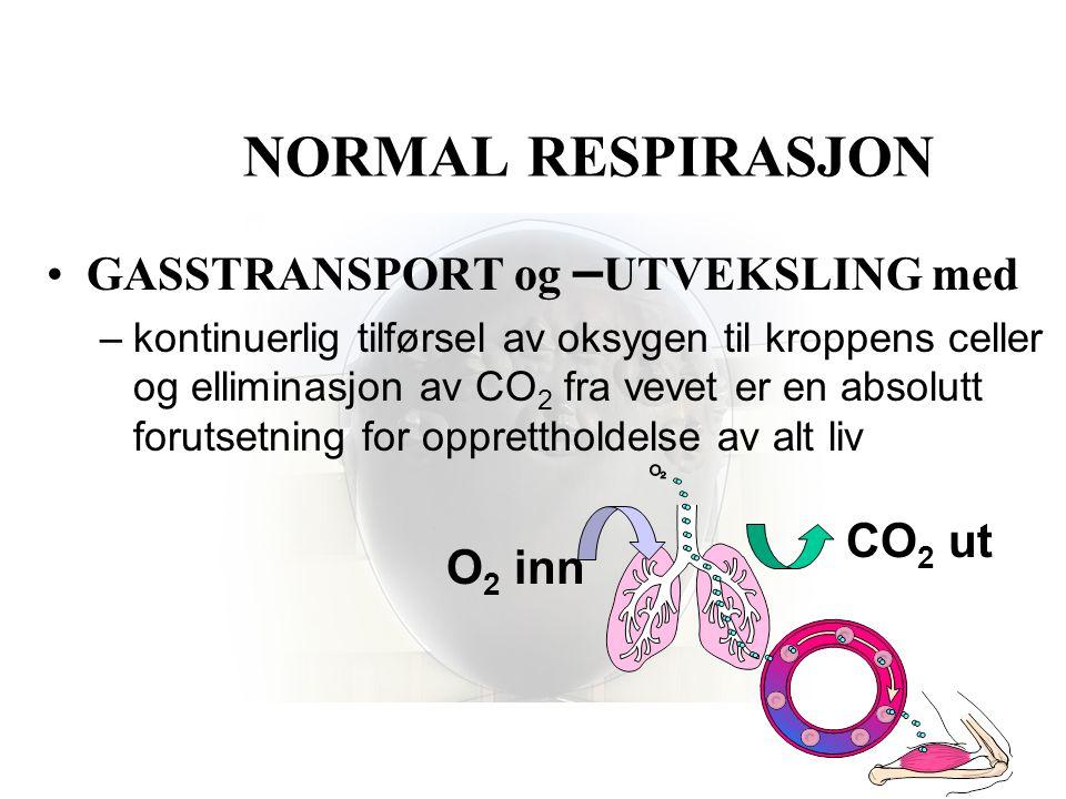 NORMAL RESPIRASJON •LUFTVEIENE –transportsystem for •oksygenholdig luft til lungene •kulldioksyd fra lungene •LUNGENE –gassutveksling •mellom alveolene og blod •KONTROLLSENTER –medulla oblongata •sentralt og perifert meldesystem •Kjemo- og strekkreseptorer