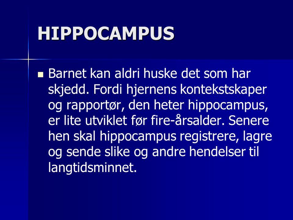 HIPPOCAMPUS   Barnet kan aldri huske det som har skjedd. Fordi hjernens kontekstskaper og rapportør, den heter hippocampus, er lite utviklet før fir
