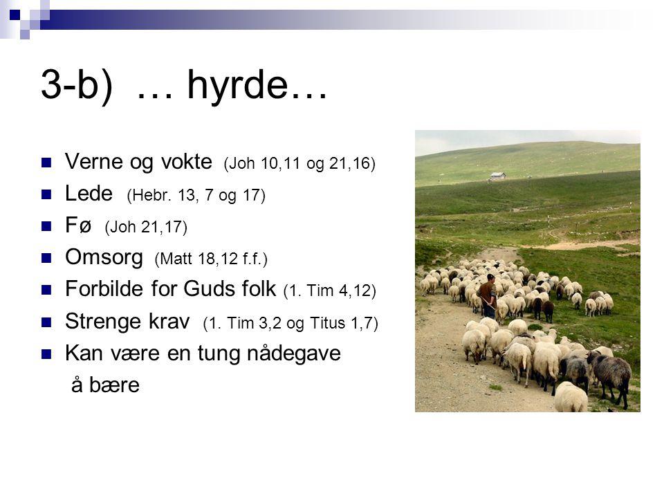 3-b) … hyrde…  Verne og vokte (Joh 10,11 og 21,16)  Lede (Hebr. 13, 7 og 17)  Fø (Joh 21,17)  Omsorg (Matt 18,12 f.f.)  Forbilde for Guds folk (1