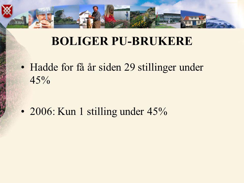 BOLIGER PU-BRUKERE •Hadde for få år siden 29 stillinger under 45% •2006: Kun 1 stilling under 45%