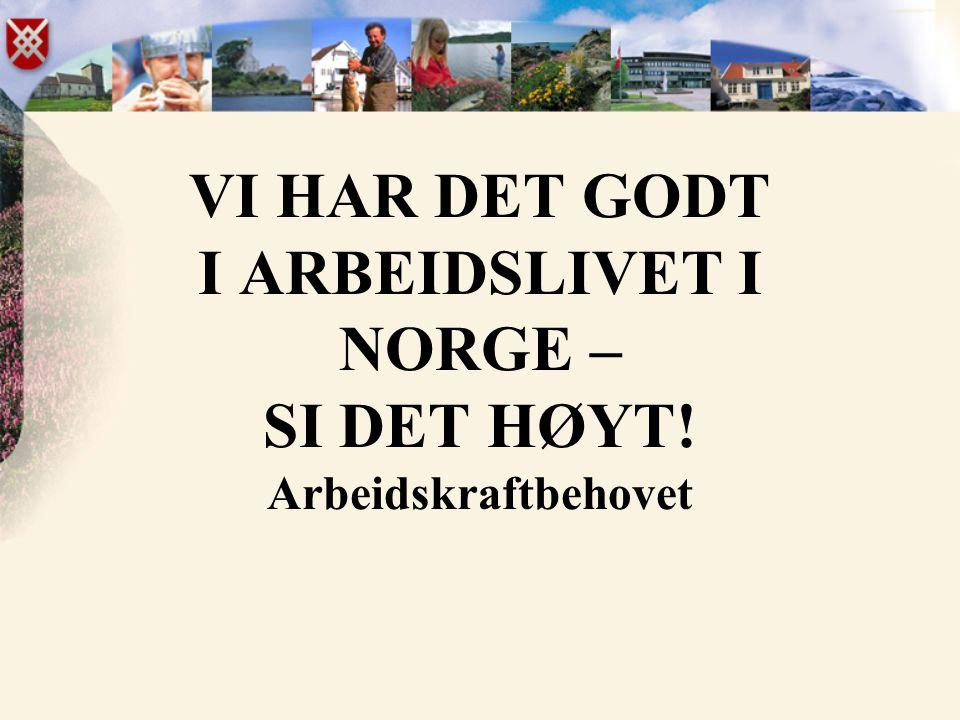 VI HAR DET GODT I ARBEIDSLIVET I NORGE – SI DET HØYT! Arbeidskraftbehovet
