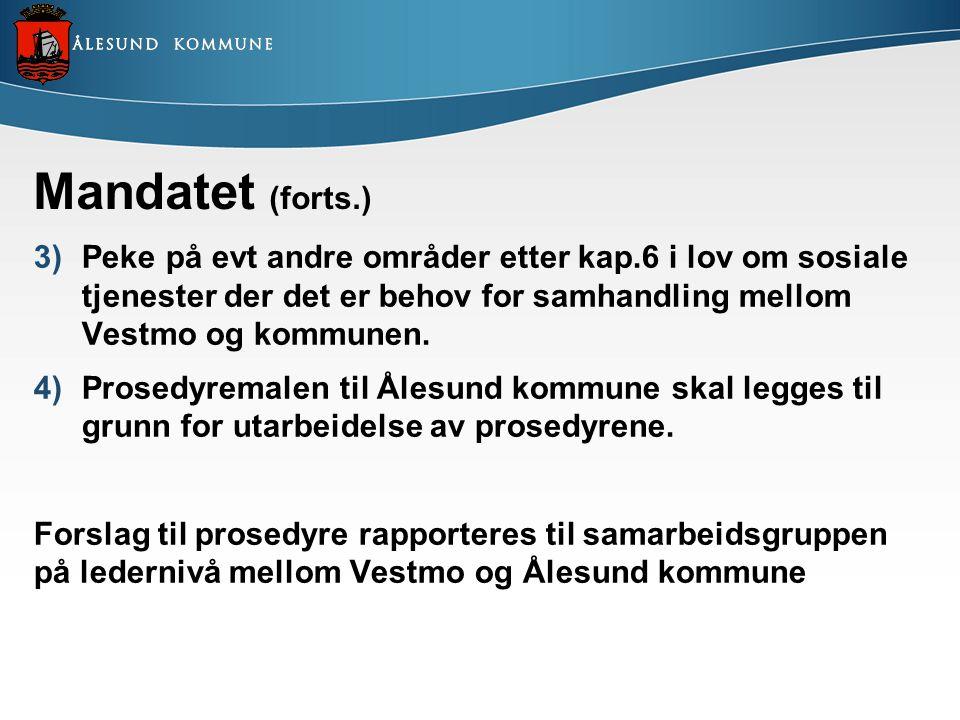 Mandatet (forts.) 3)Peke på evt andre områder etter kap.6 i lov om sosiale tjenester der det er behov for samhandling mellom Vestmo og kommunen. 4)Pro