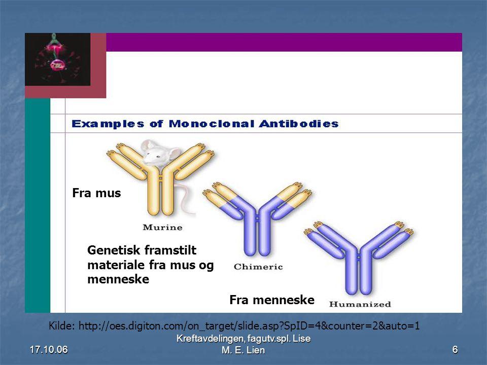 17.10.06 Kreftavdelingen, fagutv.spl. Lise M. E. Lien6 Fra mus Genetisk framstilt materiale fra mus og menneske Fra menneske Kilde: http://oes.digiton