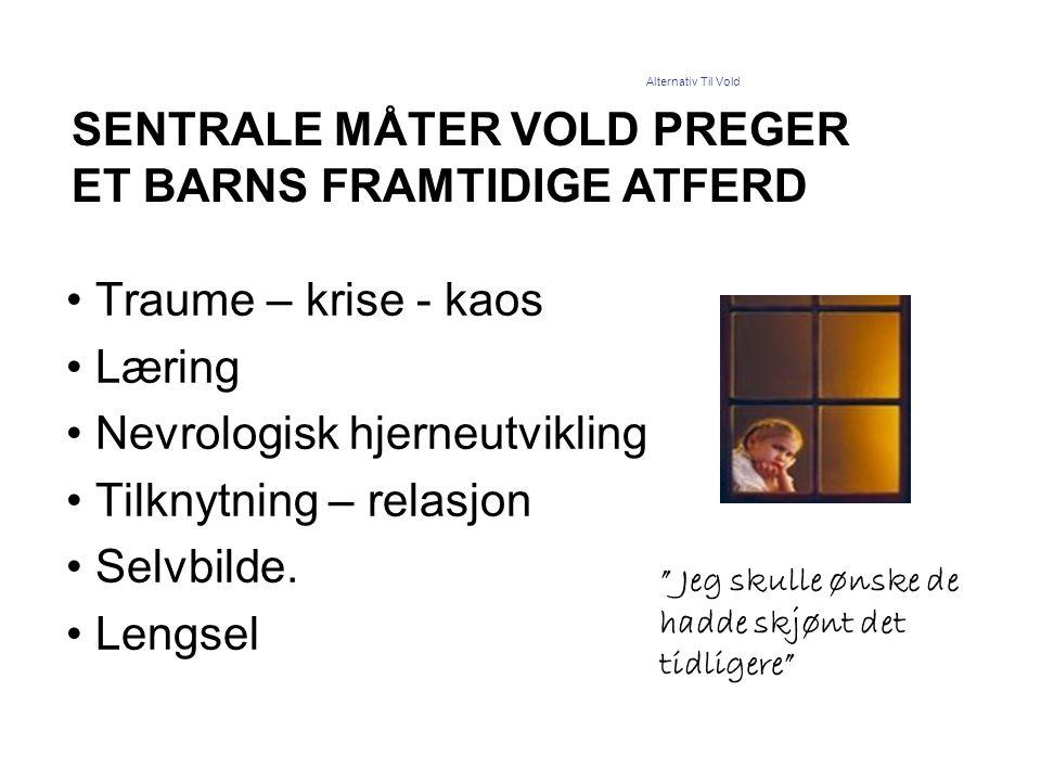 •Traume – krise - kaos •Læring •Nevrologisk hjerneutvikling •Tilknytning – relasjon •Selvbilde. •Lengsel SENTRALE MÅTER VOLD PREGER ET BARNS FRAMTIDIG