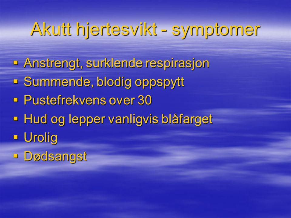 Akutt hjertesvikt - symptomer  Anstrengt, surklende respirasjon  Summende, blodig oppspytt  Pustefrekvens over 30  Hud og lepper vanligvis blåfarg