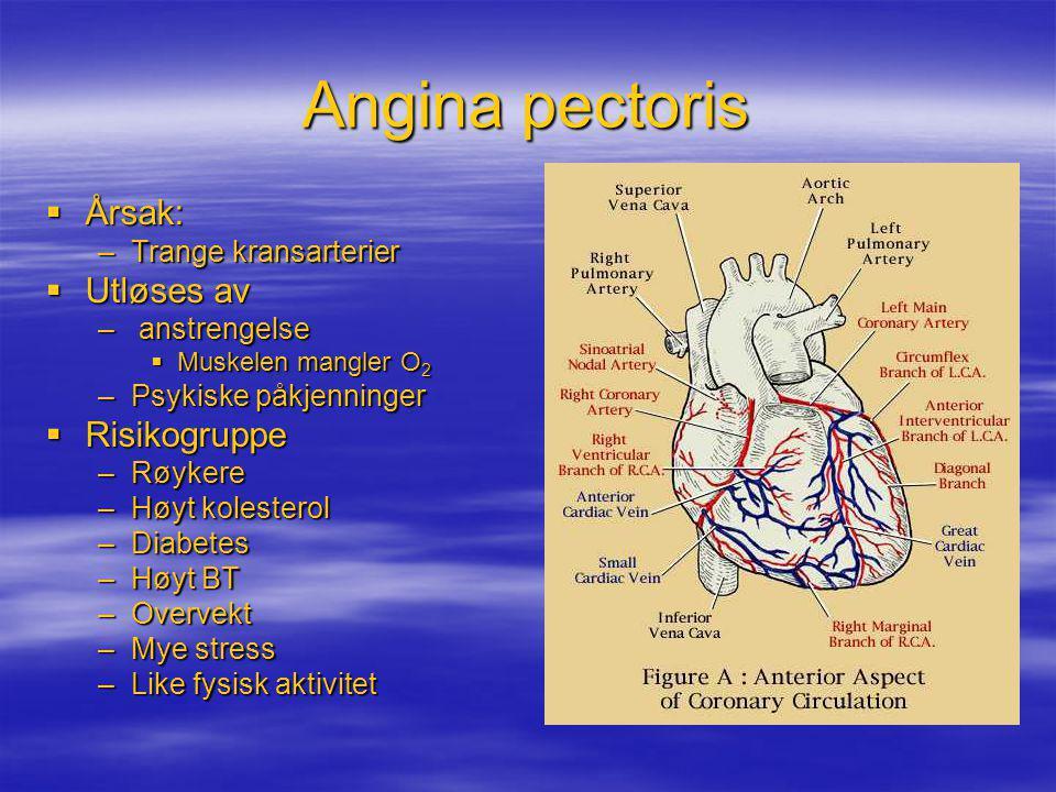 Angina pectoris  Årsak: –Trange kransarterier  Utløses av – anstrengelse  Muskelen mangler O 2 –Psykiske påkjenninger  Risikogruppe –Røykere –Høyt