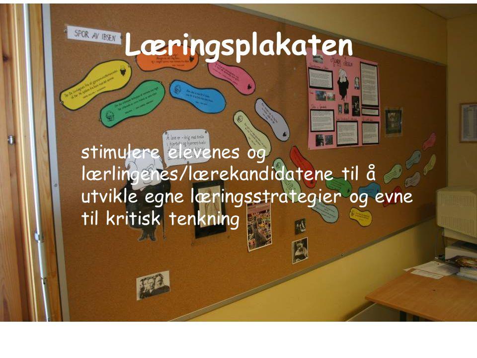 Læringsplakaten stimulere elevenes og lærlingenes/lærekandidatene til å utvikle egne læringsstrategier og evne til kritisk tenkning