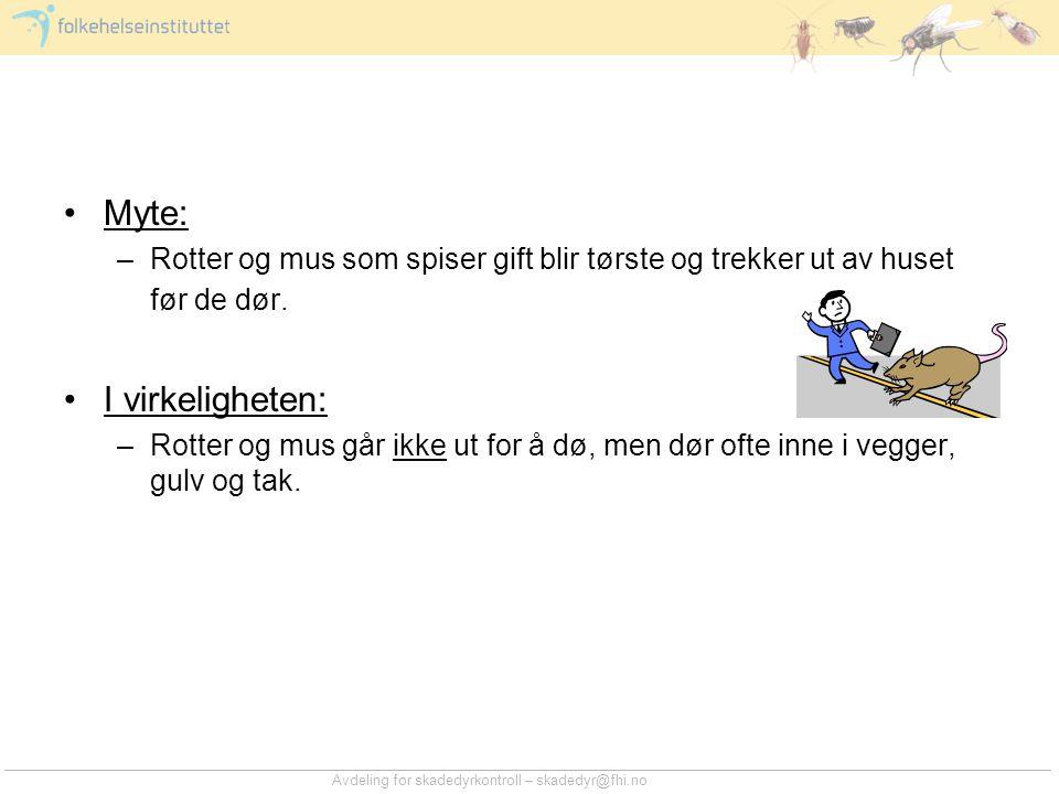 Avdeling for skadedyrkontroll – skadedyr@fhi.no •Myte: –Rotter og mus som spiser gift blir tørste og trekker ut av huset før de dør. •I virkeligheten: