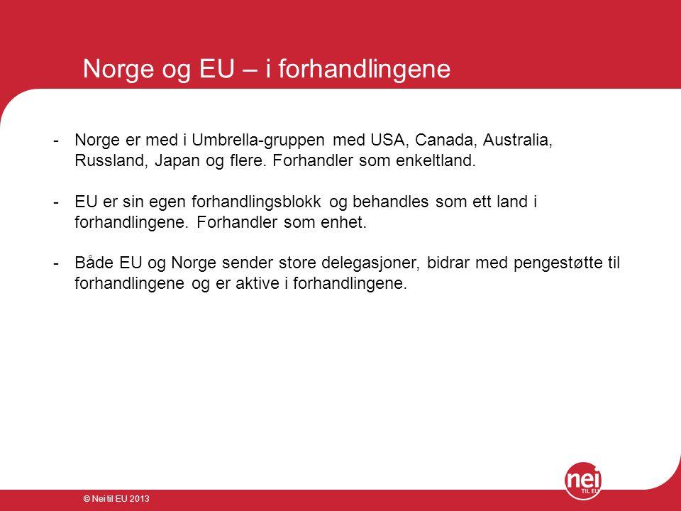 © Nei til EU 2013 Norge og EU – i forhandlingene -Norge er med i Umbrella-gruppen med USA, Canada, Australia, Russland, Japan og flere. Forhandler som