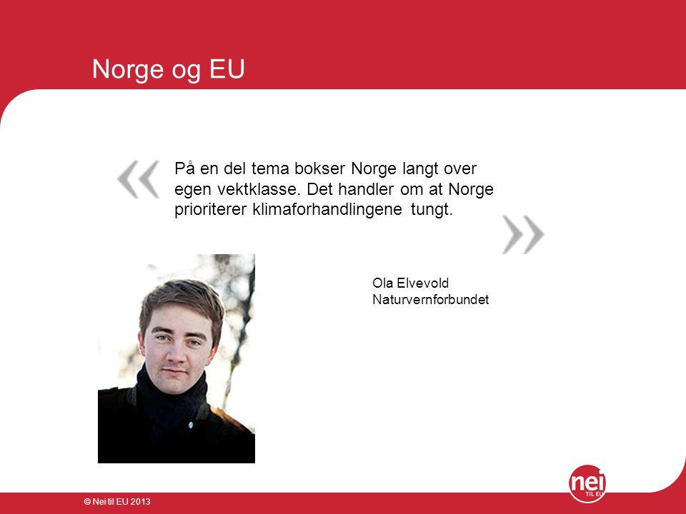 © Nei til EU 2013 Norge og EU På en del tema bokser Norge langt over egen vektklasse. Det handler om at Norge prioriterer klimaforhandlingene tungt. O