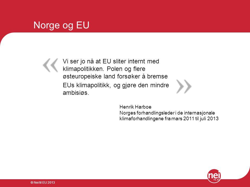 © Nei til EU 2013 Norge og EU Vi ser jo nå at EU sliter internt med klimapolitikken. Polen og flere østeuropeiske land forsøker å bremse EUs klimapoli