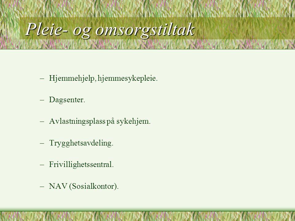 Pleie- og omsorgstiltak –Hjemmehjelp, hjemmesykepleie. –Dagsenter. –Avlastningsplass på sykehjem. –Trygghetsavdeling. –Frivillighetssentral. –NAV (Sos