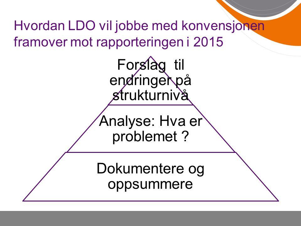 Hvordan LDO vil jobbe med konvensjonen framover mot rapporteringen i 2015 Forslag til endringer på strukturnivå Analyse: Hva er problemet ? Dokumenter